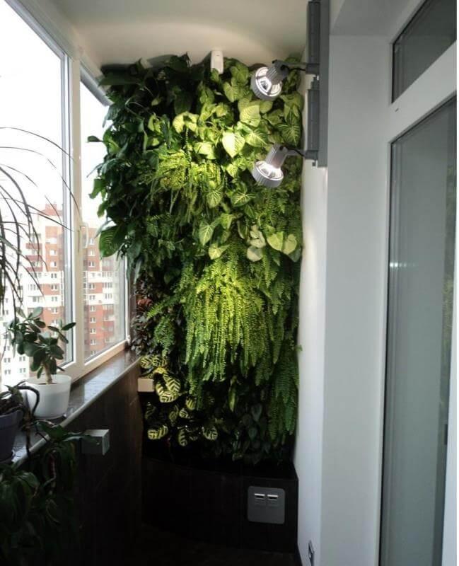 Цветы в интерьере квартиры: создатели уюта