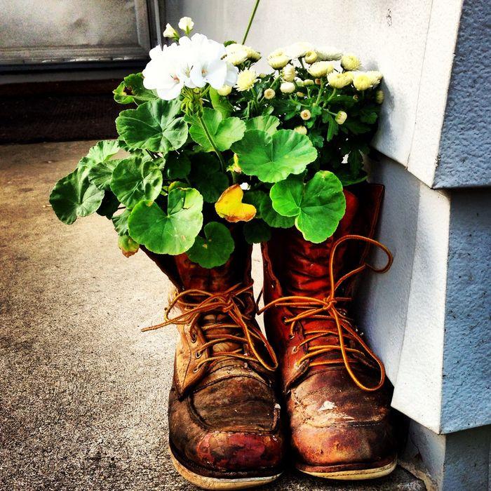 Необычные цветочные горшки — фото и идеи